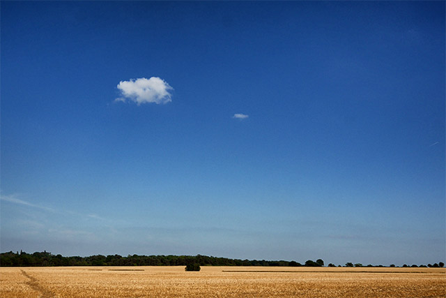 A Lonely Cloud