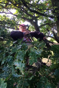 Caz Attempts A Tree Climb
