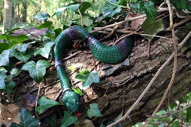 Slithery Snakey