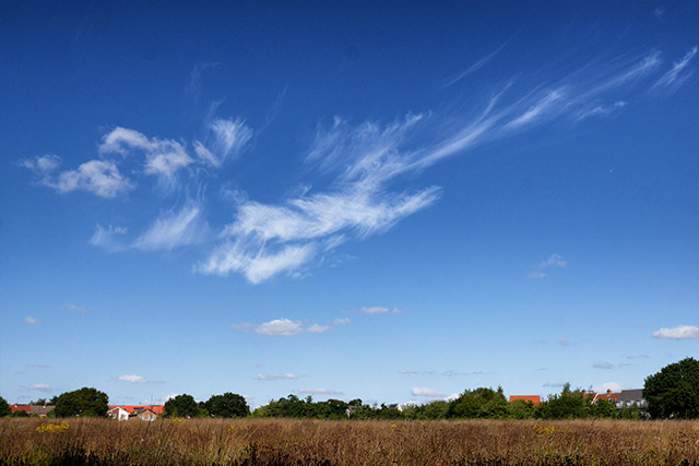 Whispy Clouds In Highwoods