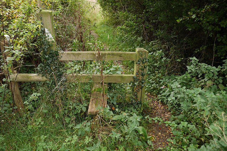 The Pointless Stile