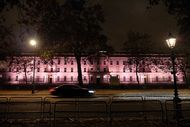 Wellington Barracks After Dark