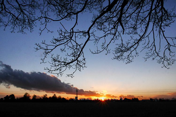 Sunset Over Ardleigh
