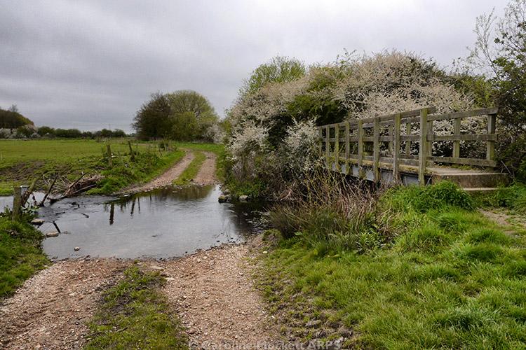 Footbridge Over The Wid