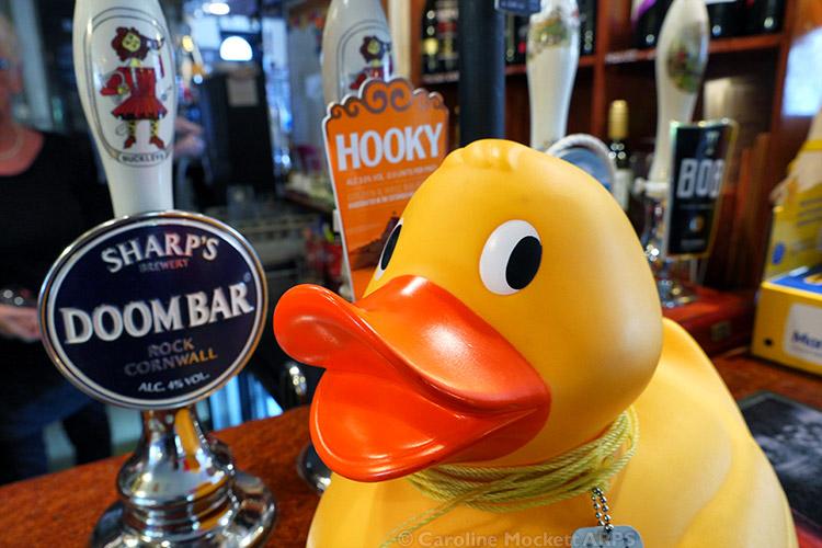 Hooky Ducky?