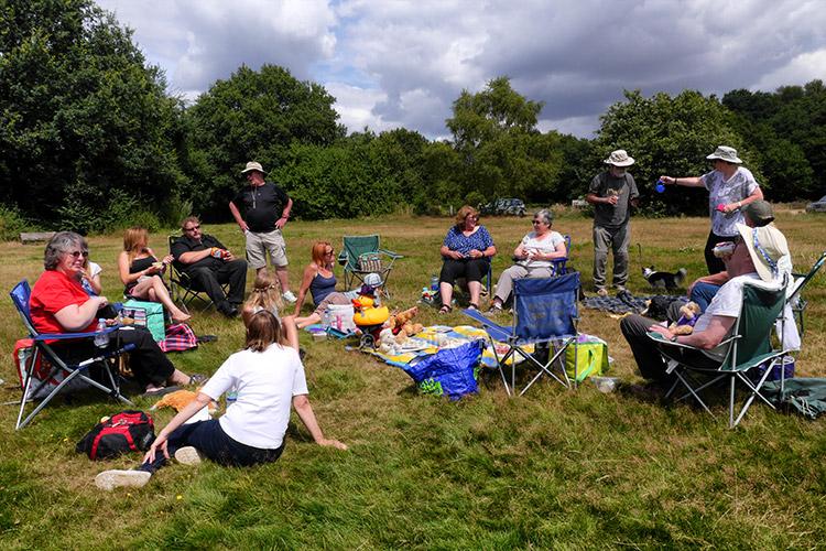 Picnic Gathering