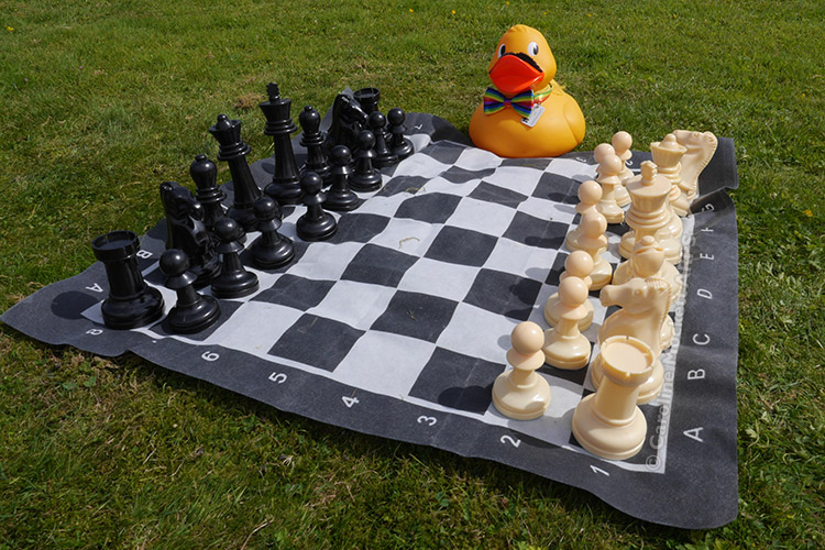 Shifty Challenges Me To Chess