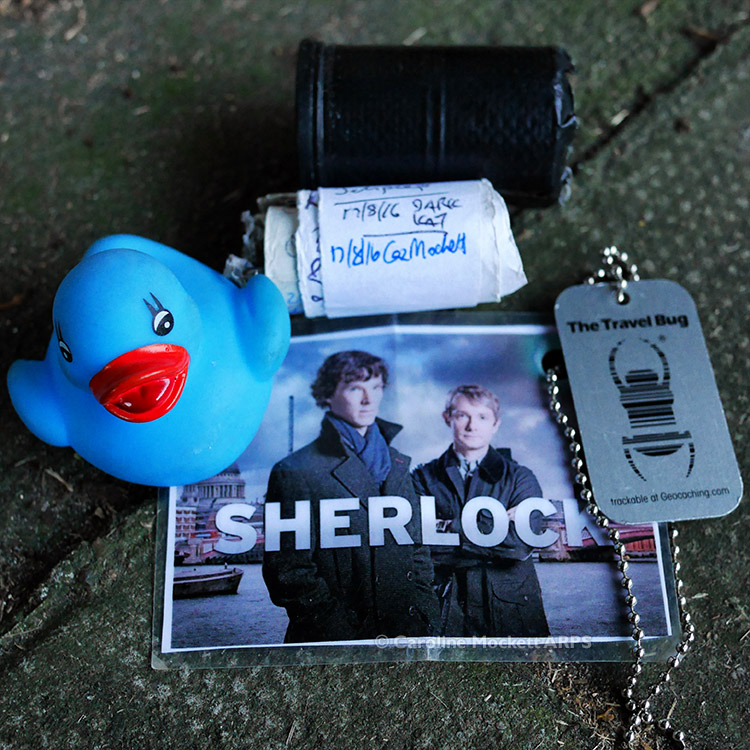 Little Quacker Meets Sherlock