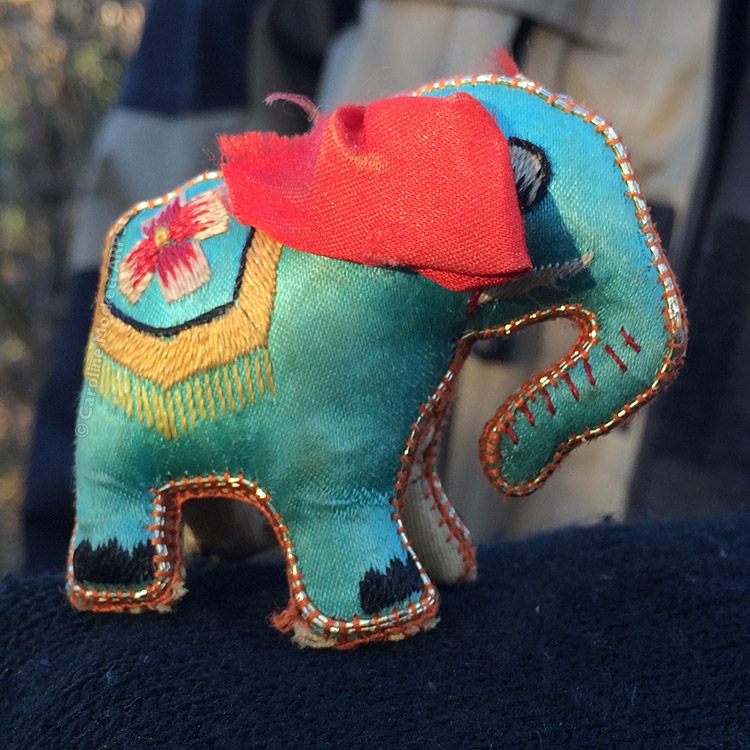We Met An Elephant!