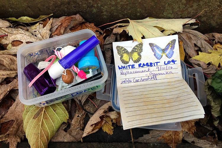 Butterflies In A White Rabbit